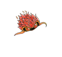Mella-guide-japonais