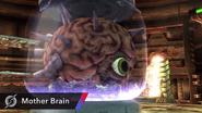 Cerebro Madre SSB4 captura