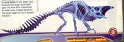 Camaleón Talloniano esqueleto MP