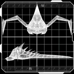 File:Parasite placeholder image 2.png