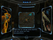 Space pirate scan images bite marks dolphin HD