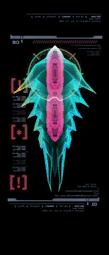 Cochinilla del Phazon escaneo izquierda mp3c