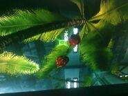 Fruta Little birdie 1