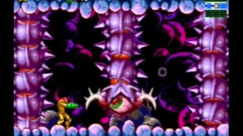 Metroid Zero Mission - King Worm