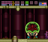 Big Metroid's room Metroid attacking Sidehopper