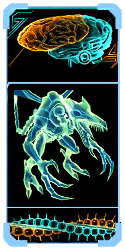 Meta Ridley brain scanpic