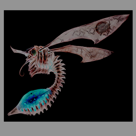 File:Chykka adult.png