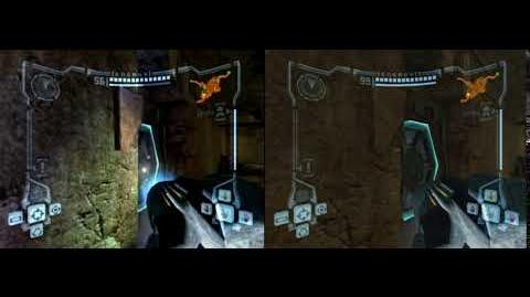 GC vs Wii Reflecting Pool