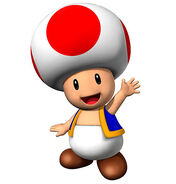 Toad Metropolitan