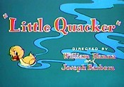 File:Littlequacker.jpg