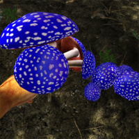 Blue-capped toadstool