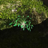 Bio-luminescent algae