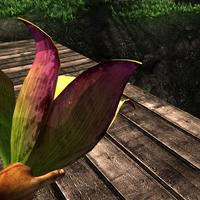 Bulbous fruit plant in hand