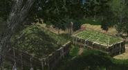 Outpost Mushroom