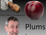 Plums Incorporated