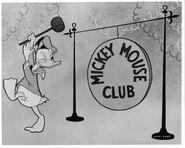 76f6cae4b3a077b991ac2a78554724a5--mickey-mouse-club-vintage-disney