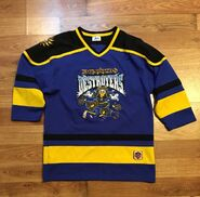 Donald's destroyers jersey