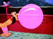 Pluto and giant gum bubble