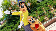 Goofy-and-pluto-in-hollywood-1-9-2