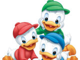 Huey, Dewey and Louie