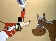 Goofy approaching horse with confidence