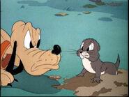 Pluto meets gopher