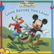Look before you leap book