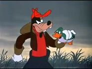 Goofy figuring out real duck vs decoy