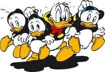 Donald Duck AAAARG!