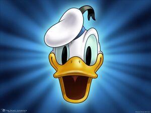 Donald Cartoons