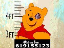 Winnie the Pooh (Catalunya)