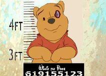 Winnie the Pooh (Catalunya) 4