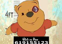 Winnie the Pooh (Catalunya) 3