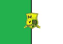 Bandera del 2 batallon