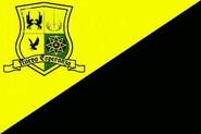 Bandera original