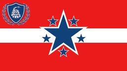 PALUKISTÁN FLAG 3