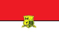 Bandera del 3 batallon