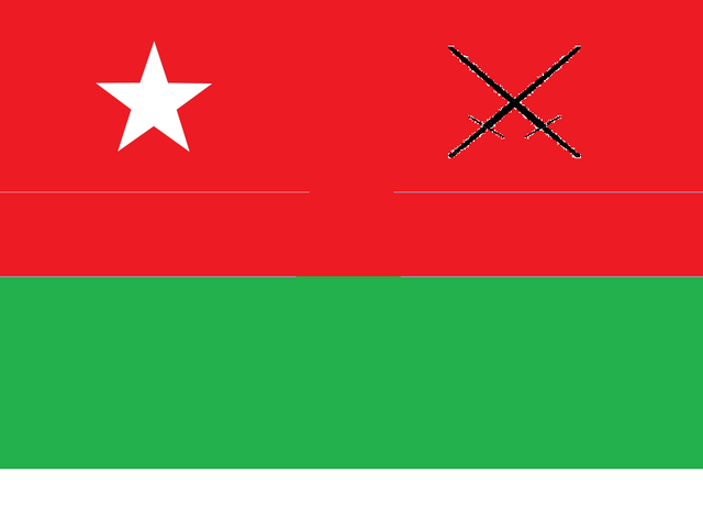 File:War Flag Of North Molarus.png