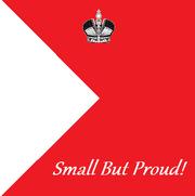 5th Infantrie Companie Flag