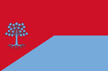 Ministryofsafetyflag