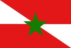 Flag of the Republic of Adana