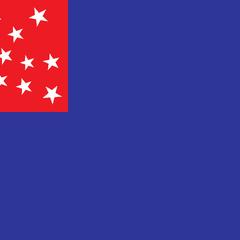Flag of Old Bloomingdale
