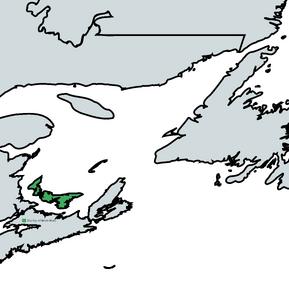 Brian Boru Map