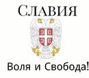 Славия (партия)