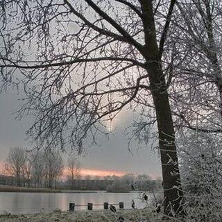 Lake miel in the winter