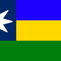 Flag of the <a href=