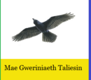 Republic of Taliesin