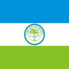 Flag of Miami
