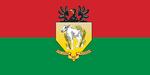 Flag RepDemVitla