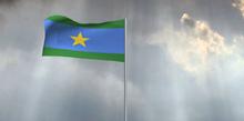 Entente flag waving